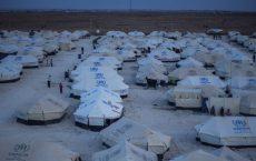 Flyktningleir i Tyrkia Foto: Brian Sokol/UNHCR